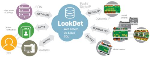 LookDet schema